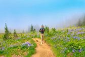 Excursionista masculino caminando el sendero con flores silvestres y soñadora niebla. — Foto de Stock