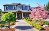 Grey lareg luxury house with spring blooming trees. — Stock Photo