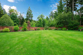 Green large fenced backyard with trees. — Stock Photo