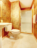 Golden antique bathroom with shower and marble tiles. — Stock Photo