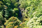 Chute d'eau de l'île maui avec lac et jangles. — Photo