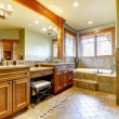 Luxury large master bathroom in mountain home. — Stock Photo