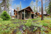 Mountain cabin home exterior with forest and flowers. — Stock Photo