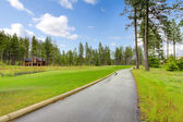 Sentier d'or cours de pins et de maisons. — Photo
