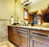 Luxury bathroom cabinets in mountain home. — Stock Photo