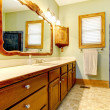 Stock Photo: Simple bathroom with old cabinets and green walls.