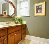 Classique simple salle de bain vert avec armoires en bois. — Photo