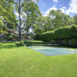 Tennis court with house on the hill and bright green grass. — Stock Photo #18287993