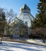 Botanical Conservatory at Wright Park, Tacoma. Downtown. Winter. — Stock Photo