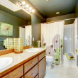 Green bathroom with wood cabinet and shower tub. - ストック写真