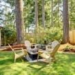 Home exterior Backyard with chairs and pine trees. — Stock Photo #21773765