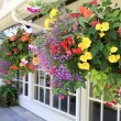 Many hanging baskets with flowers outside of house windows. — Stok fotoğraf