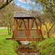 Covered bridge over little creek during fall. — Stock Photo