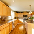 Comfortable big kitchen room — Stock Photo #38944269