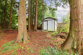 Wooden small backyard shed — Stock Photo