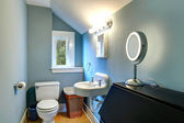 Vaulted light blue small bathroom — Stock Photo