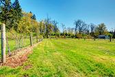 Countryside farm view — Stock Photo