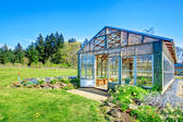 Farm with greenhouse — Stock Photo