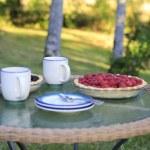 Enjoying countryside life. Wonderful summer morning — Stock Photo #40033393