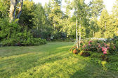 Flourishing farm backyard — Stock Photo