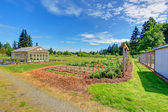 Farm green house — Стоковое фото