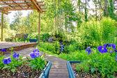 Stunning view from backyard deck — Zdjęcie stockowe