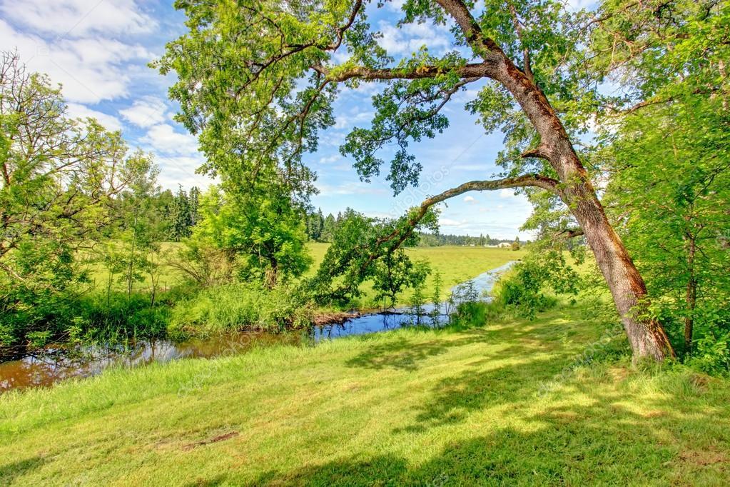 Bon Dimanche Depositphotos_40037107-stock-photo-beautiful-summer-countryside-landscape