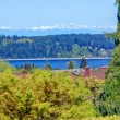 Stunning panoramic view on the bay from a backyard porch — Stock Photo