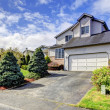 House drive way and curb appeal — Stock Photo #40750645