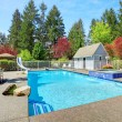 View of backyard with swimming pool — Stock Photo
