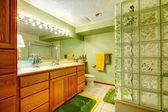 Parlak yeşil banyo — Stok fotoğraf