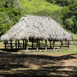 Native Hawaiian village house — Stock Photo #41226097