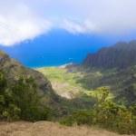 Paradise on Hawaiian islands — Stock Photo #41226655