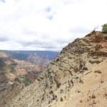 Man is overlooking Waimea Canyon, Hawaiian islands — Stock Photo