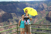 Happy family on the observation deck of Waimer Canyon. Hawaiian  — Stock Photo