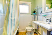 Refreshing green and white bathroom — Stock Photo