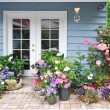 Exterior wall with french door decorated with flowers — Stock Photo #42224301