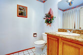 Light blue bathroom. VIew of washbasin cabinet and toilet — Stock Photo