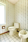 Floral bathroom with toilet and bidet — Stock Photo
