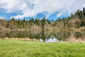 Small lake Rasmussen, Duval. WA state. USA — Stock Photo