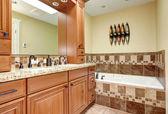 Brown tones bathroom interior — Foto de Stock