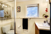 Gentle bathroom interior — ストック写真