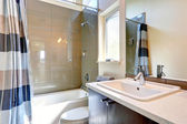Bathroom with olive tile trim — Stock Photo