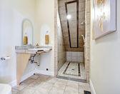Bathroom with vaulted ceiling shower area — Stok fotoğraf