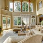 Luxury house interior. Living room — Stock Photo #44718823