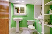 Zelené a bílé koupelna — Stock fotografie