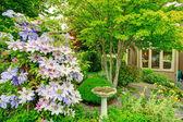 Home garden with antique fountain — Stockfoto
