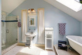 Velux bathroom with antique bath tub — Stock Photo