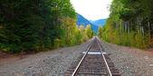 铁路与地平线上的 mountaints。华盛顿州 — 图库照片