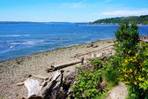 Tacoma NE Browns Point Puget Sound. — Stock Photo